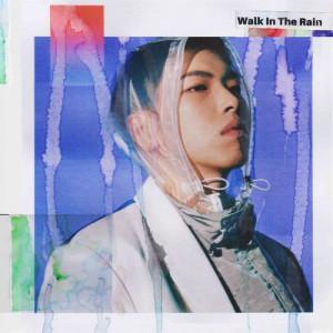 Osshun Gum的專輯Walk In The Rain