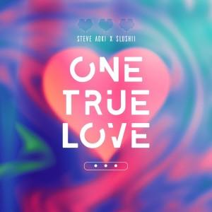 Album One True Love from Slushii