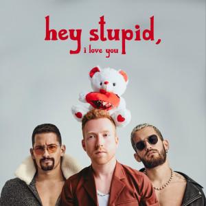 Hey Stupid, I Love You (Spanglish Version)