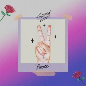 """""""Peace"""" dari Soundwave"""