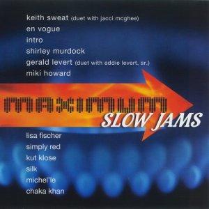 Album Maximum Slow Jams from Various Artists