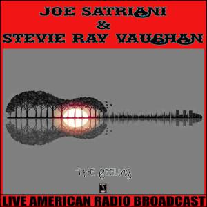 Album The Feeling from Joe Satriani