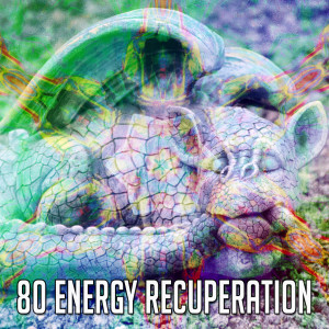 Album 80 Energy Recuperation from SPA