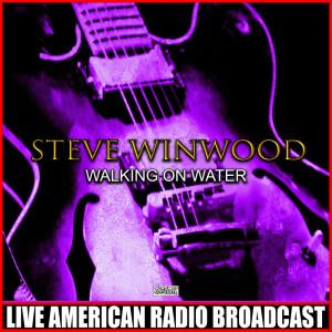 Album Walking On Water from Steve Winwood