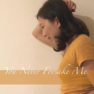 羅孝思的專輯You Never Forsake Me