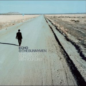 Album What Are You Going To Do With Your Life? from Echo & The Bunnymen