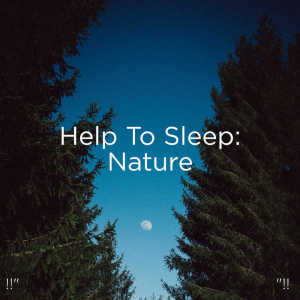"""อัลบัม !!"""" Help To Sleep: Nature """"!! ศิลปิน Nature Sounds Nature Music"""