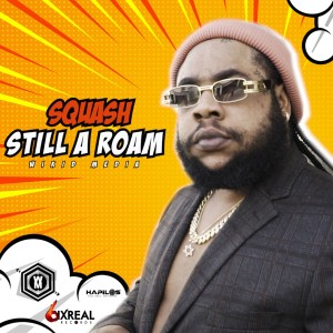 Listen to Still a Roam (Explicit) song with lyrics from Squash