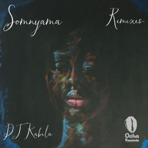 Album Somnyama from WendySoni