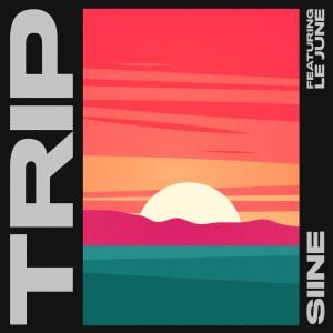 Album Trip from Siine