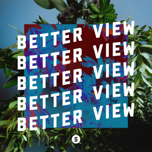 Album Better View from Switch