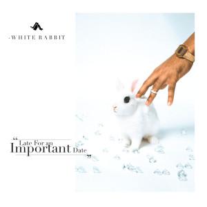 Album White Rabbit (Explicit) from Jay Ant