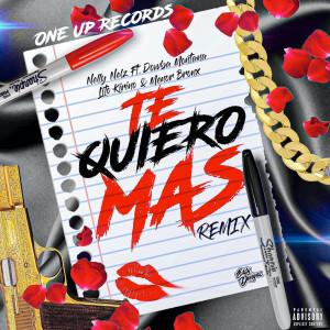 Album Te Quiero Mas (Remix) (Explicit) from Nelly Nelz