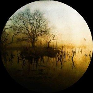 Album Transcend from Knobs