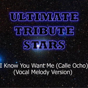 Ultimate Tribute Stars的專輯Pitbull - I Know You Want Me (Calle Ocho) (Vocal Melody Version)
