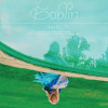 Sulli Album Goblin Mp3 Download
