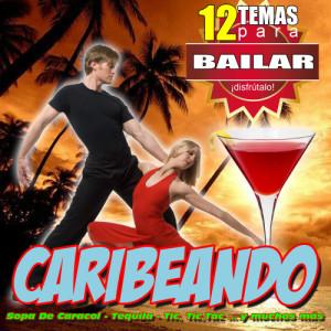 Album Caribeando 12 Canciones Para Bailar Salsa Rumba Y Merengue from Spanish Caribe Sound