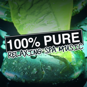 Album 100% Pure Relaxing Spa Music from Pure Relaxing Spa Music