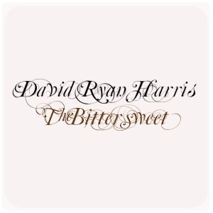 收聽David Ryan Harris的Hold My Fire歌詞歌曲