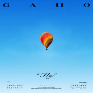 FLY dari Gaho