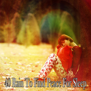 Album 40 Rain to Find Peace for Sleep from Rain Sounds & White Noise