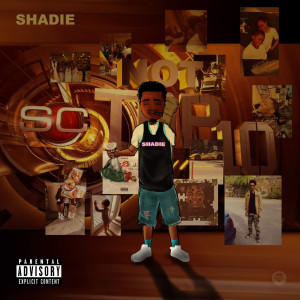 Album Not Top 10 from Shadie