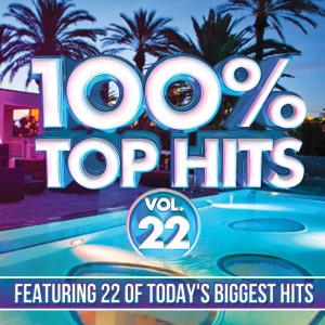 100% Top Hits, Vol. 22 dari Various Artists