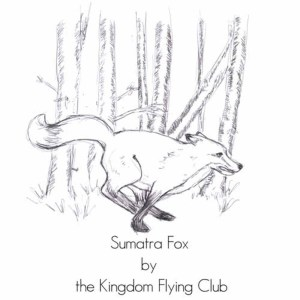 The Kingdom Flying Club的專輯Sumatra Fox E.P.