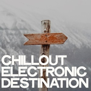 Album Chillout Electronic Destination from Various Artists