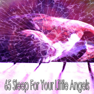 Rockabye Lullaby的專輯65 Sleep for Your Little Angels