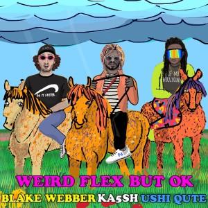 Album Weird Flex But Ok (Explicit) from Ka5sh
