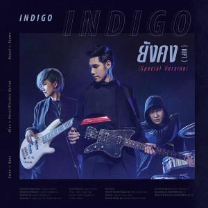 อัลบัม ยังคง(Kept) (Special Version) - Single ศิลปิน Indigo