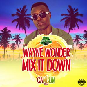 Album Mix It Down from Wayne Wonder