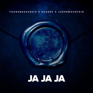 Listen to Ja ja ja song with lyrics from Blauwdruk Boothcamp