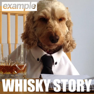 Listen to Whisky Story song with lyrics from Example