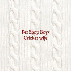 Pet Shop Boys的專輯Cricket wife
