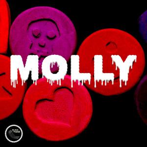 Album Molly (Explicit) from Blanco