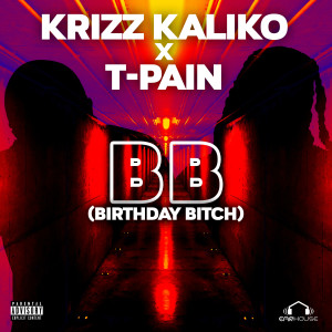 Album BB (Explicit) from T-Pain