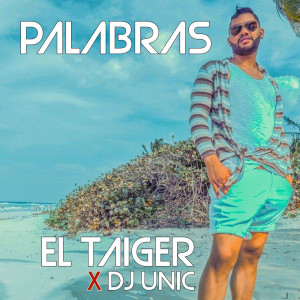 Album Palabras from El Taiger
