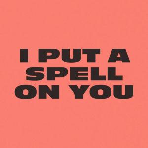 Chaka Khan的專輯I Put A Spell On You