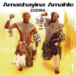 Listen to Msholozi song with lyrics from Amashayina Amahle