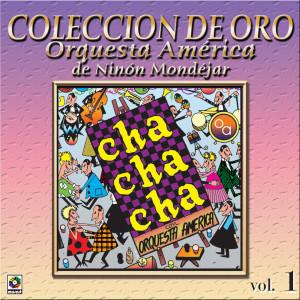 Album Colección De Oro: Bailando Al Compás Del Cha Cha Chá, Vol. 1 from Orquesta America