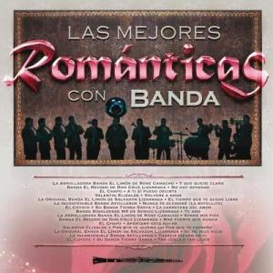 Listen to Te Amo song with lyrics from Various Artists