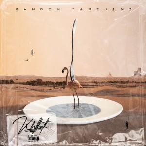 Album Random Tapejamz from Kholebeatz