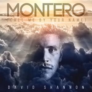 MONTERO (Call Me By Your Name) dari David Shannon