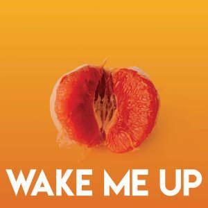 Album Wake Me Up from DJ Tokeo