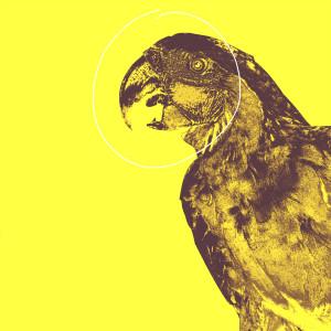 Album Parrot from elsemore