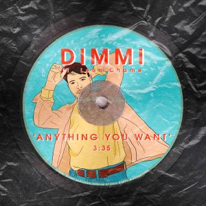 Album Anything You Want (feat. Leon Chame) from Dimmi