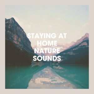 Echoes of Nature的專輯Staying at Home Nature Sounds