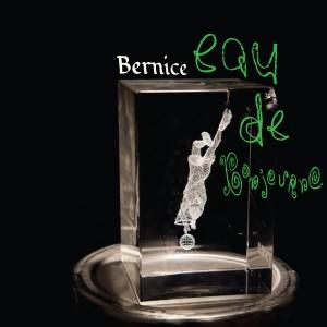 Album It's Me, Robin from Bernice